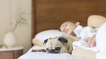 Can't Sleep While Pregnant? Steal My Pregnant Sleep Routine.